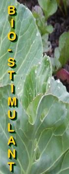 Ormus Minerals Fulvic Acid Minerals Bio-Stimulant