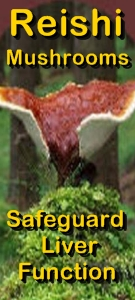 Ormus Minerals Reishi Mushrooms - safeguard liver function